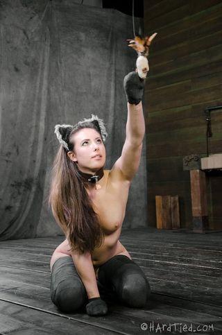 Девушка с анальной пробкой с хвостом позирует в подвале фотографа